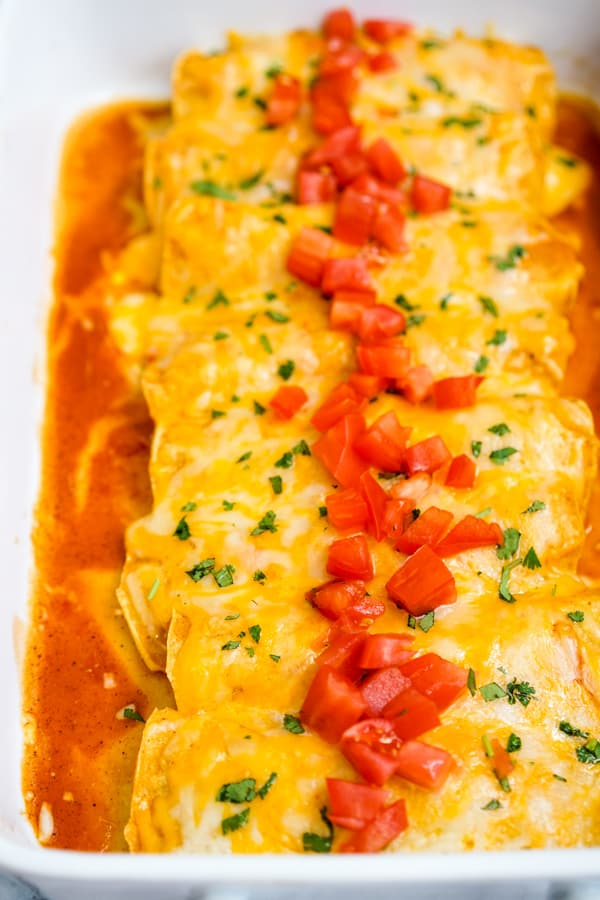 Chicken Enchilada cooked in an Instant Pot topped with cheese, tomatoes and cilantro